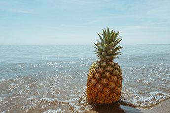 Pineapple for pickling